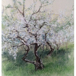 APPLE TREE by Edita Ter-Balyan