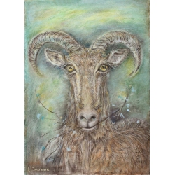 A GOAT by Larisa Jociene
